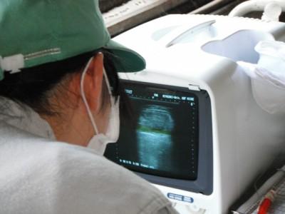 診断装置画面①